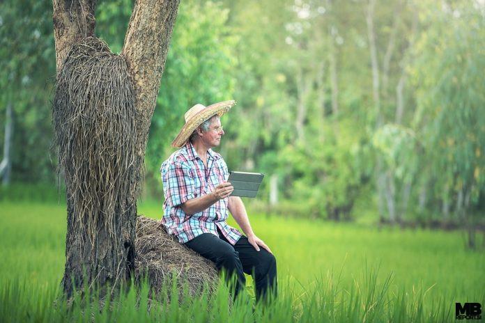 kmetovanje s tablico